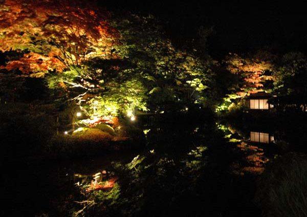夜間特別拝観「逍遥園ライトアップ」